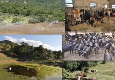 Agriturismo Chalet Le Terrazze Sul Mare Bio